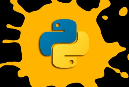 mari-python_logo