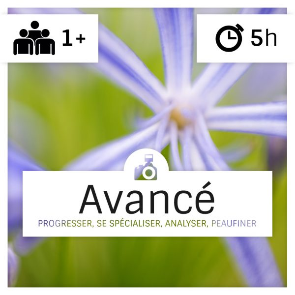 cours-photo-intermediaire-alsace-3