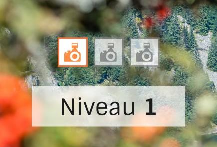 olivier-schmitt-cours-niveau-1